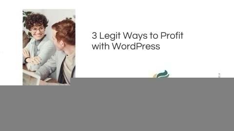 3 Legit Ways to Profit with WordPress